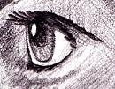Manga Augen Zeichnen