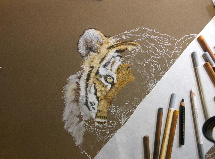 Einen Tiger Fell Mit Pastellkreiden Malen