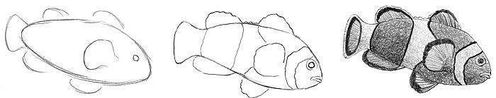 tiere malen zeichnen lernen. Black Bedroom Furniture Sets. Home Design Ideas