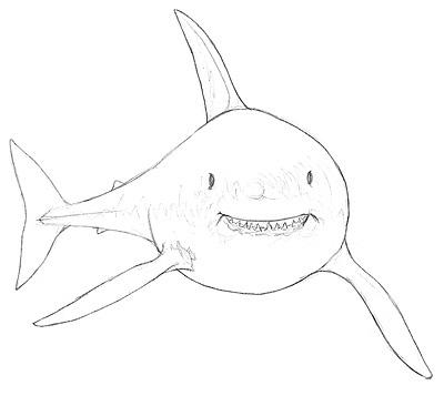 einen hai zeichnen & malen