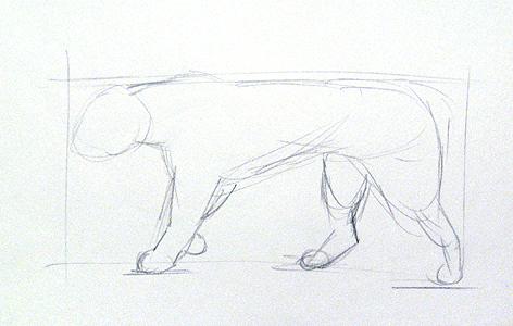 tiere selber zeichnen
