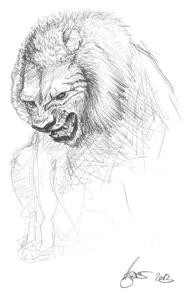 Zeichnen tiere leicht zu Zeichnungen Tiere